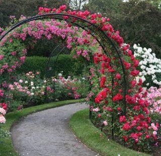 кованая арка для цветов в Николаеве