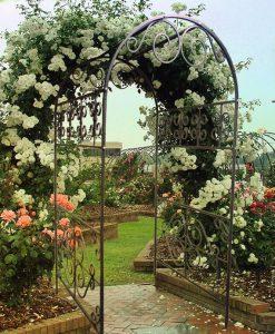 кованые арки для сада в Николаеве